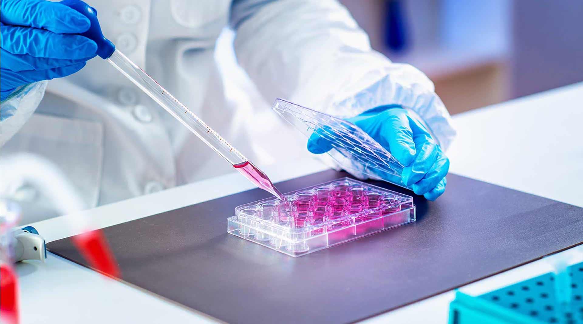 Autotrapianto-di-cellule-staminali